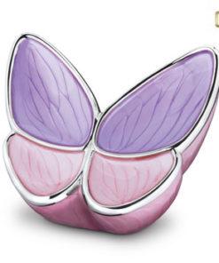 Urn butterfly vlinder