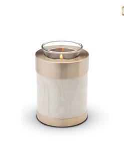 Urn wit met geborstelde gouden messing