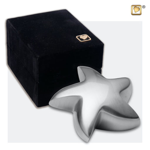Messing mini urn ster geborsteld zilver