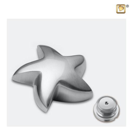 Messing urn ster geborsteld zilver