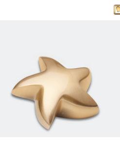 Mini urn ster geborsteld goud