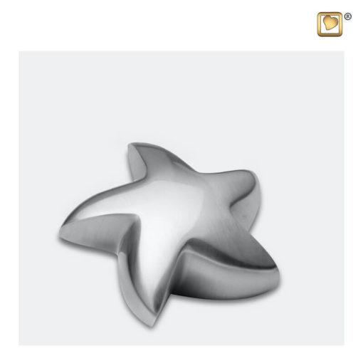 Mini urn ster geborsteld zilver