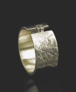Gouden ring met vingerafdruk en chaoten met zikronia steen van 2mm